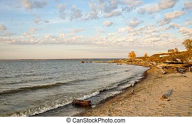 Stump on the seashore. Sunset landscape