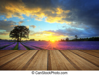 Stunning atmospheric sunset over vibrant lavender fields in Summer with wooden planks floor