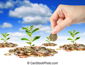 Plants, coins and hand with coin over sky background.