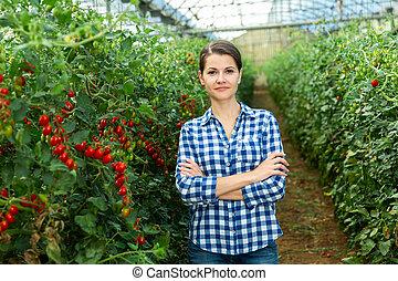 Successful female horticulturist in greenhouse near grape tomatoes