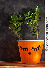 Succulent plant in orange pot. Creative reindeer with green horns in minimal style. Minimalistic home decor, urban jungle