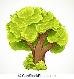 Summer big tall tree with green foliage surrounded by a low shrub vector drawing isolated on white background