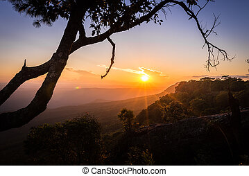Sunrise on the top of mountain at Phukradueng national park : Loei province Thailand