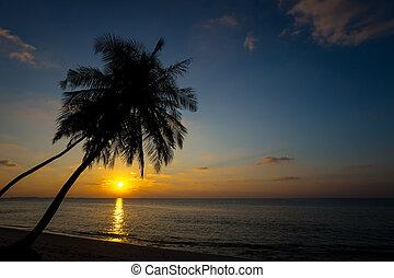 sunset on the beach of sea
