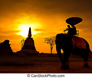 Sunset Thai countryside in thailand