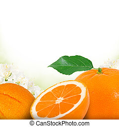 Photo of tangerine and slice with blossom background