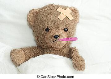Teddy in hospital