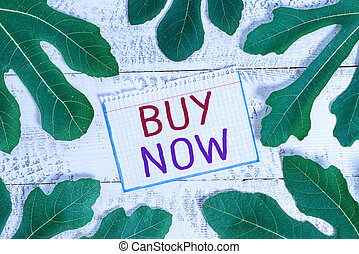 Text sign showing Buy Now. Conceptual photo asking someone to purchase your product Provide good Discount.