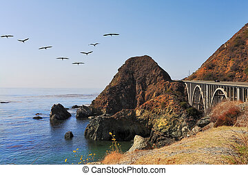The bridge on the coastal highway