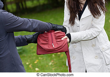 A thief trying to steal a bag from a woman in a park