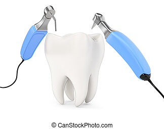 Tooth and dental instruments