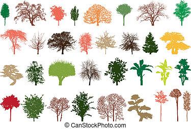 trees, colour