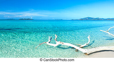 Tropical beach Malcapuya at summer sunny day. Panorama