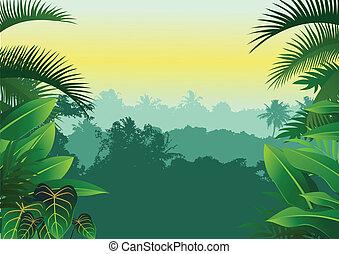 Vector tropical jungle