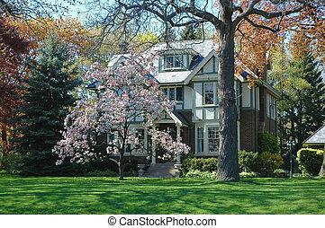 Tudor House 3
