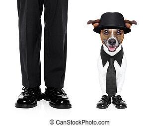 tuxedo dog and owner