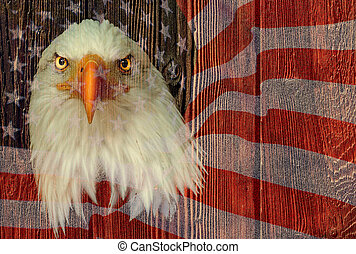 USA eagle with american flag and wooden texture