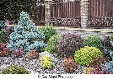 Various bushes in the home garden, landscape design