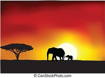 Vector Illustration Of Africa sunset