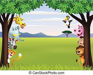Funny safari animal cartoon