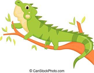 iguana cartoon