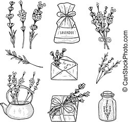 lavender herb set