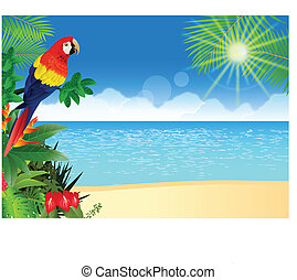 Vector Illustration Of Macaw with tropical beach background