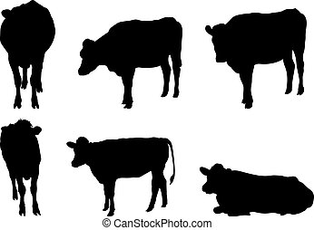 Vector Set of 6 cow silhouettes