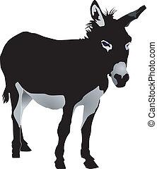 vectors donkey