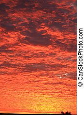 Very red cloudscape
