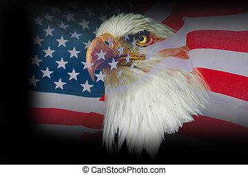 Wallpaper american eagle with USA flag