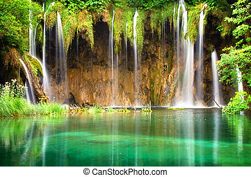 Beautiful waterfall in the forrest