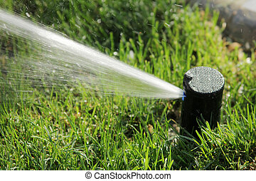watering the grass with sprinkler system