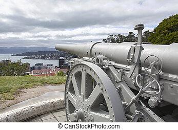 Wellington City Cannon