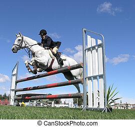 White Show Jumper
